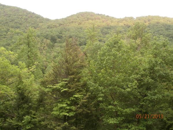 Smokey Mountain Trip May, 2013
